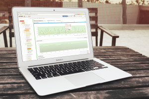 SAYMON: Зонтичные системы мониторинга